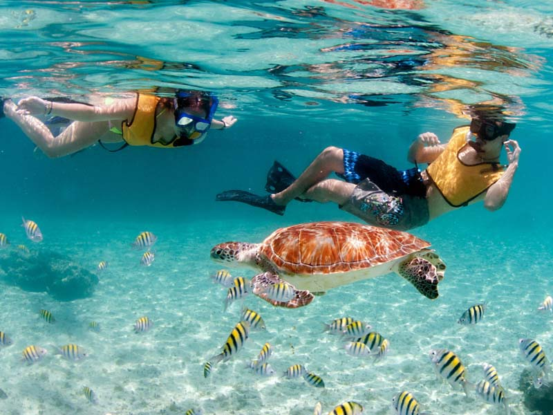 Paso Doble Snorkeling Charters