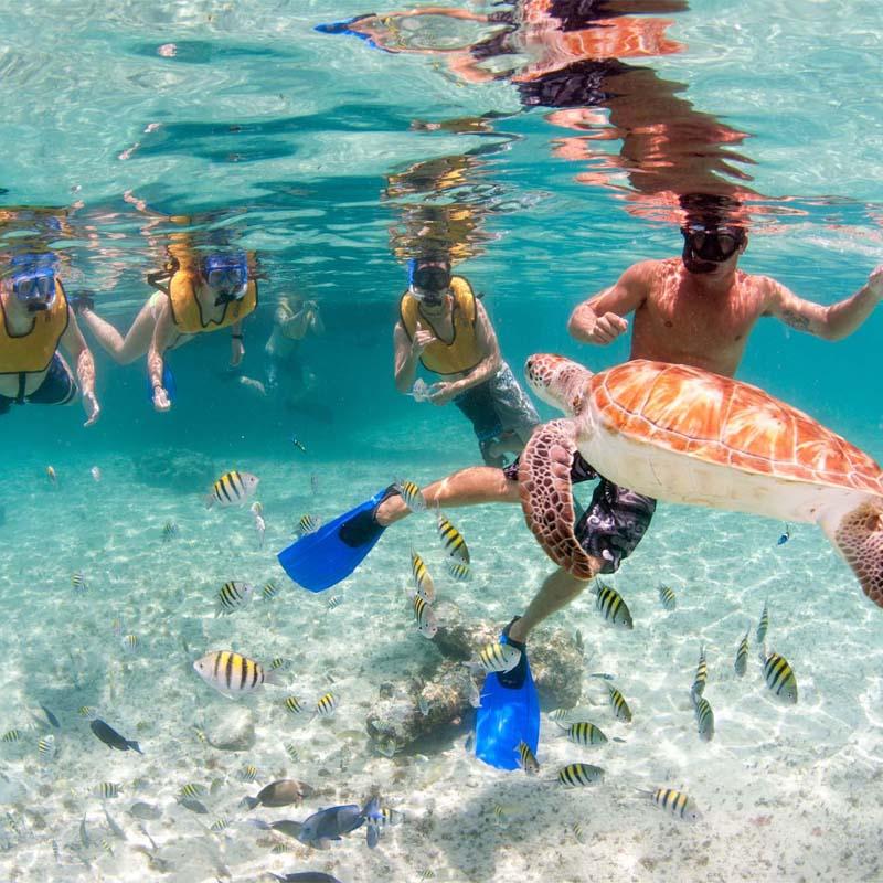Hard Rock Riviera Maya Tour - Furthur Paradise Waits